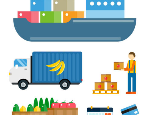 What's New:  Key considerations for succeeding in your logistics for exporting fresh produce