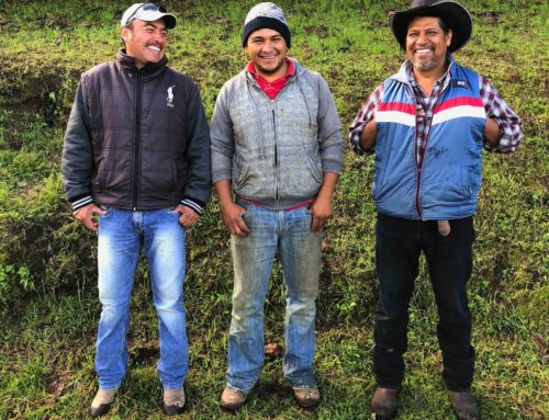 Cold storage as a service: InspiraFarms launches its on-demand pay-as-you-chill model in Mexico