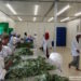 InspiraFarms closes Series B investment round to scale the deployment of innovative solar-powered cold storage solutions in East and Southern Africa