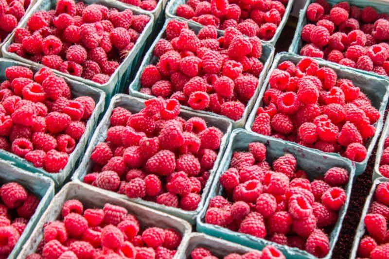 Pre-cooling berries