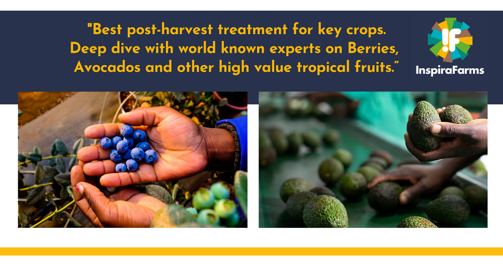 Best post-harvest treatment for key crops